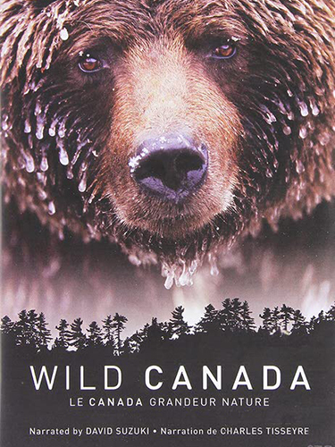 Natural History Film Production Netflix Wild Canadian